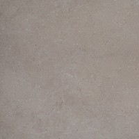 PavingPlus Limestone Cream Paving